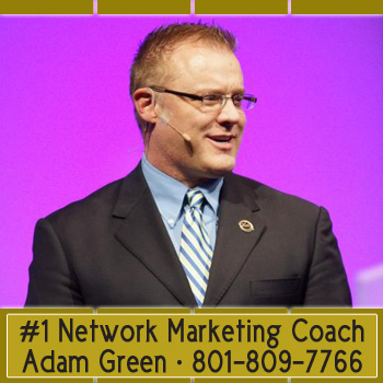 Adam Green notable store traineradampaulgreen.com