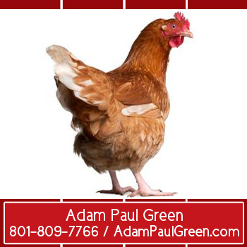 Adam Paul Green influential home office coachadampaulgreen.com